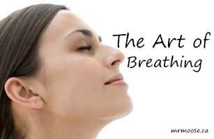 The Art of Breathing.png