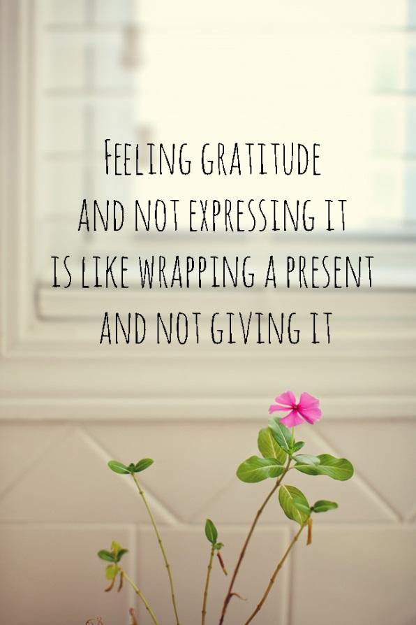 Gratitude, www.mrmoose.ca